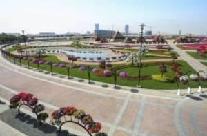 Vista Aérea Miracle Garden